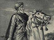 Vůdce Hašašínů